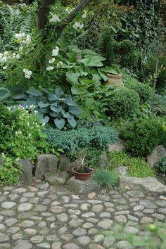 pretty stone path in a shady corner