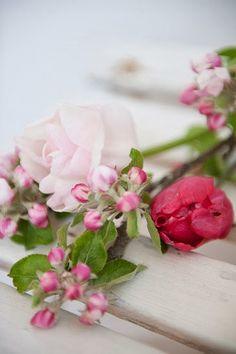 Äppelblom & rosor