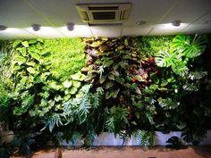 Fake Artificial Living Wall Panel Artificial Green Wall Artificial Vertical Garden Wall of cia-artificial-plants