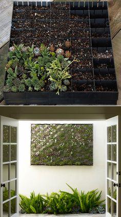 Diy Panel Vertical Succulent Garden