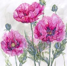 Pink Opium Poppies Framed at Whistlefish Galleries - handpicked contemporary & traditional art that is high quality & affordable. Available online & in store Beatrix Potter, Traditional Art, Framed Art Prints, Poppies, Canvas Art, Clip Art, Tapestry, Contemporary, Gallery