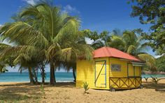 Plan a Guadeloupe honeymoon using The Knot's travel guide. Get tips on weather, things to do, and the best time to travel to Guadeloupe. Petits Bars, Italy Coast, Location Gite, Outre Mer, Beach Bungalows, Beach Shack, Vacation Places, Vacations, Vacation Ideas