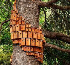 Build a little birdhouse in your soul - birds eat bugs!!! Looks like a birdie condo complex