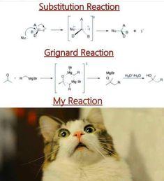 24 Dank Memes For The Science Lovers - Memebase - Funny Memes humor 24 Dank Memes For The Science Lovers Funny Science Jokes, Chemistry Jokes, Nerd Jokes, Funny School Memes, School Humor, Biology Jokes, Physics Jokes, Medical Jokes, Chemistry Classroom