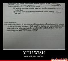 Enron essay