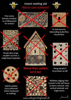 The worst nightmare for each wild bee! (poster insect nesting aid insect hotel wild bee solitary bee wildlife garden pine cones softwood drills  negative example) Neudorff