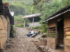 Kondisi track jalur pendakian Gunung Lawu via Cemoro Sewu