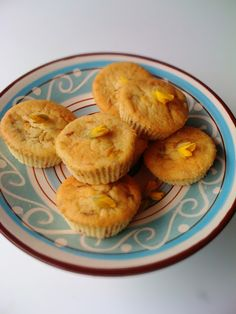 Alessandra Zecchini: Gorse flower cupcakes, foraging in Anawhata