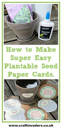 We show you how to make Super Easy Plantable Seed Paper Cards using Bostik White Glue and Kitchen Towel.