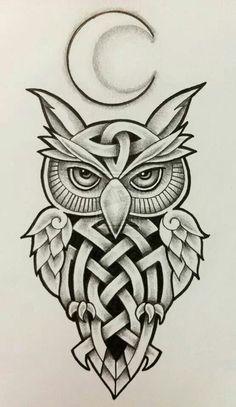 Tribal Owl - Celtic Knot Owl