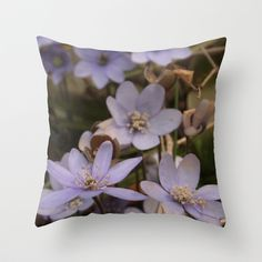 """Throw Pillow / Indoor Cover (16"""" X 16"""") • 'Blaaveis' • IN STOCK • $20.00 • Go to the store by clicking the item."""