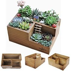 Wooden Succulent Planter Boxes for Indoor House Miniature Plants, Succulents Cacti Fairy Garden Container