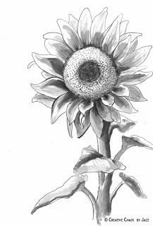 96 Best Drawing Sunflowers Images Sunflower Drawing Sunflowers