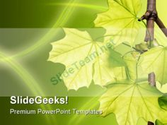 World Forest Geographical Powerpoint Templates And Powerpoint