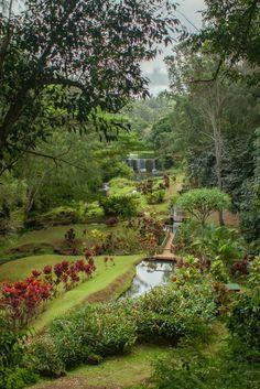 7. Wai Koa Loop Trail, Kauai Waimea Beach, Kauai Hiking, Visual Arts Center, Exotic Plants, Archaeological Site, Big Island, Hiking Trails, Oahu, Beautiful Gardens