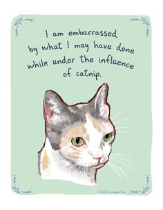 Under the Influence of Catnip.Serious Cat print of original painting by tinyconfessions on Etsy. Funny Cats, Funny Animals, Cute Animals, Grumpy Cats, Animal Funnies, Funny Minion, Funny Cartoons, Crazy Cat Lady, Crazy Cats