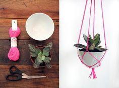 Pflanzen-Aufhänger