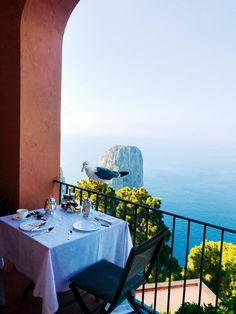 Summer's Calling and All We Can Think About Is Capri #SOdomino #room #blue #azure #restaurant