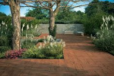 Mirage EVO Sundeck Classic | Timber Look 20mm Thick Porcelain Pavers | Available at Ceramo