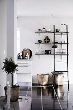 Kitchen: ladder