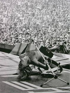 Van Halen Photo - WOW.