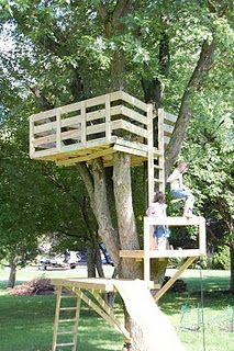 1000 images about backyard treehouse ziplines on for Simple tree fort ideas