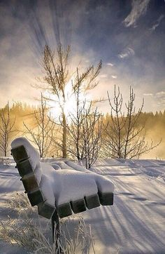Reflective Solitude is what Ci calls this. Apt description. Note the long shadows on snow & sun rays through slim branches.
