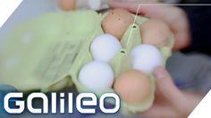 Rechtsirrtümer Supermarkt | Galileo Lunch Break
