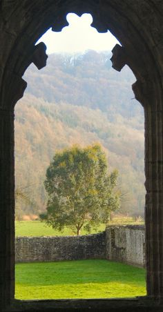 Tintern Abbey, Monmouthshire,Wales.