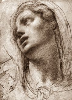 (Can't fins source/location) - Portrait of a Female Head Woman Drawing, Life Drawing, Figure Drawing, Drawing Sketches, Art Drawings, Raphael Paintings, Annibale Carracci, Beaux Arts Paris, Art Through The Ages