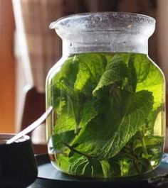 DIY How To Make A Herbal Tea For Cold & Flu Relief