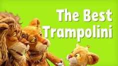 The Best Trampolini | Between the Lions | PBS KIDS Vocabulary Games | Learn adjectives with this silly trio!
