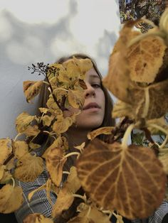 Photo by Sofie Hoeyer Wood Watch, Shades, Autumn, Photography, Wooden Clock, Photograph, Fall Season, Fotografie, Fall