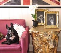 I can't even stand how cute these are. Custom Victorian Dog Portraits via...love Maegan