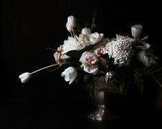 Large Scale Flower Dark Floral Modern by lucysnowephotography