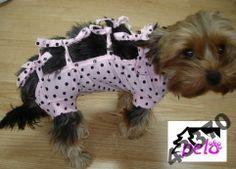 Pelo*UBRANKO koszulka pooperacyjna dla psa kota 1