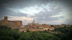 Siena toscana Altstadt panorama piazza Abenddämmerung