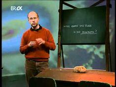 Prof. Harald Lesch: Woher kommt das Fluor in unserer Zahnpasta?