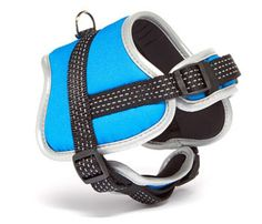 Padded Blue Harness-Reflective and Adjustable -by Iconic Pet