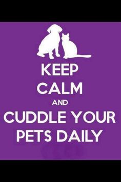 KEEP CALM and CUDDLE YOUR PETS DAILY