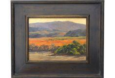 Santa Ynez Valley in Autumn