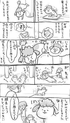 松本ひで吉 (@hidekiccan) さんの漫画 | 144作目 | ツイコミ(仮) Poodle, Mammals, Diagram, Birds, Manga, Humor, Comics, Cats, Funny