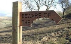 bite out of sign Funny Dog Signs, Funny Warning Signs, Dangerous Dogs, Beware Of Dog, Farm Signs, Trail Signs, Types Of Dogs, Humor Grafico, Halloween Signs