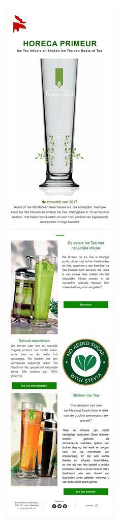 horeca primeur -  Ice Tea Infusion