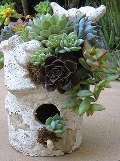 Succulent Rooftop Ceramic Birdhouse Workshop