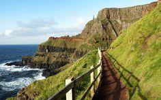 Grüne Wiesen und Klippen wohin das Auge schaut – Giant's Causeway an der Küste Irlands