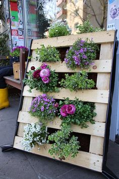 انتج فى المنزل - Recycle Idea  in Home : استغلال جيد لبلتات الخشب في الزراعة
