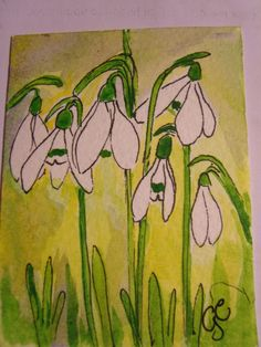 in x in ACEO of beautiful snowdrops from my garden, watercolour painting on Bockingford paper, with Windsor and Newton watercolours, fine black ink liner. Original Artwork, Original Paintings, Tea Bag Art, Spring Art Projects, Linoprint, Spring Painting, Pencil Art Drawings, Winter Art, Art Club