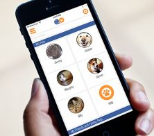 VitusVet; a free app on iPhone & android that allows your to keep your pets medical records on your phone. Read all about it here!