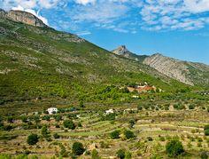Maserof near Jalon, Spain